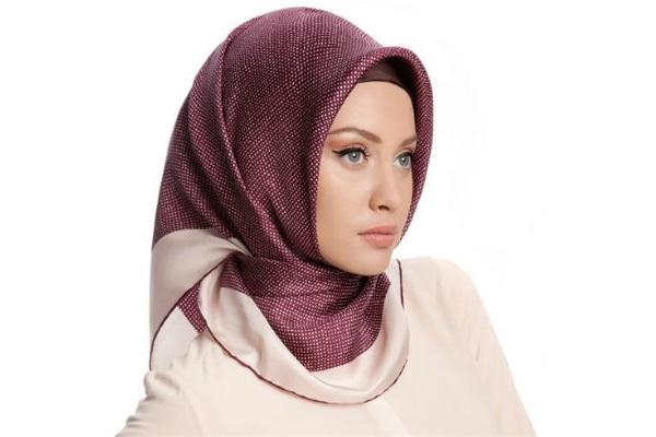 دفاع عن الاسلام في موضوع دفاع عن حقوق النساء في مجاميع الدولية!